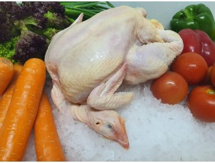 (Halal) Fresh Chicken 1.2kg - 1.3kg