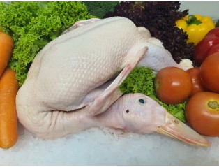 Halal Fresh Whole Duck 2kg